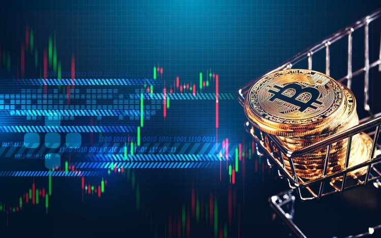 bitcoinnss